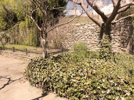 jardin-damero-fondamatia-002
