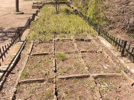 jardin-damero-fondamatia-003