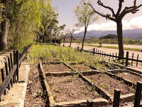 jardin-damero-fondamatia-008