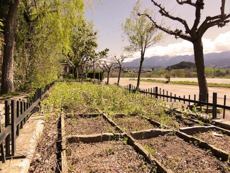 jardin-damero-fondamatia-009